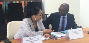 nuevos proyectos de Co-Inversión con Holding Guinea Ecuatorial listos para comenzar